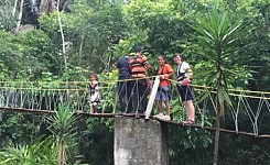 Canopy_Tour_Bridge